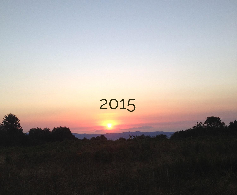 bonne_année_2015_blog